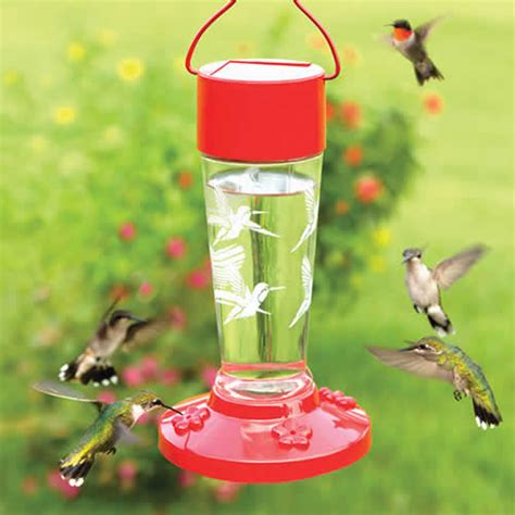 duncraft com red solar hummingbird feeder