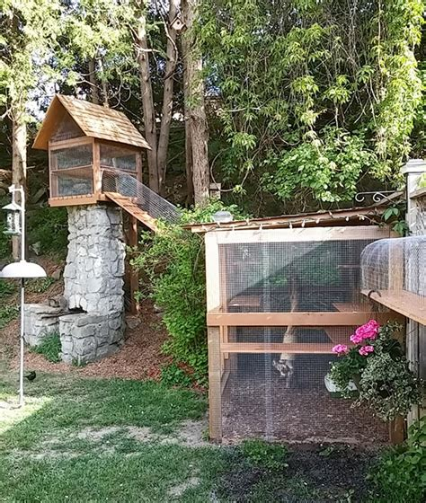 backyard cat enclosure diy outdoor cat enclosure pvc pictures to pin on pinterest