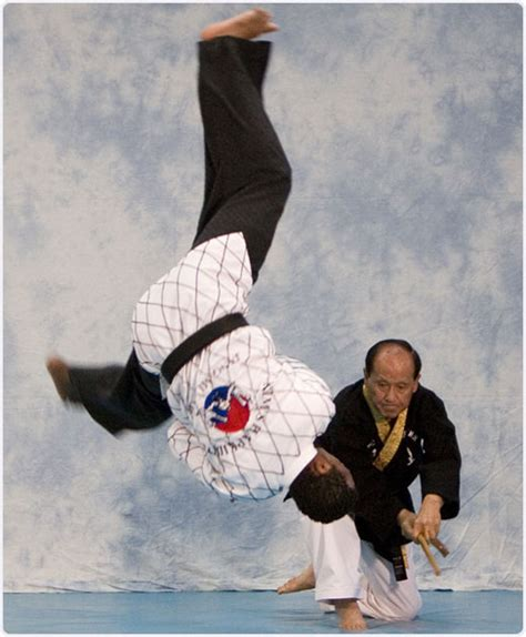 Hapkido A Comprehensive System From Beginner To Advanced Philippe Pinerd jang mu won hapkido