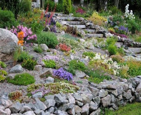 vorgarten pflegeleicht gestalten vorgarten hang pflegeleicht gestalten new garten ideen