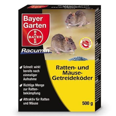 Ratten Bekämpfen Garten by Ratten Im Garten Locher Carprola For