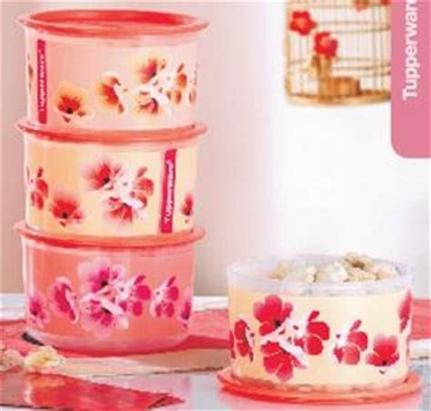 Tupperware Plum get your tupperware tupperware new year caign jan feb 2010