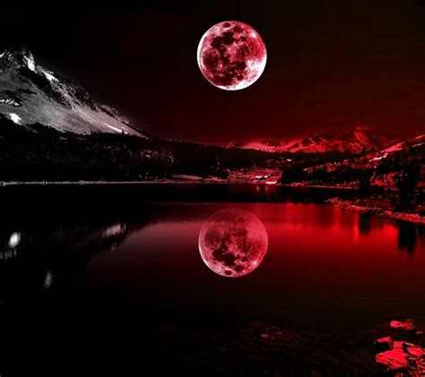 themes for your mobile phone zedge download red moonlight wallpapers to your cell phone