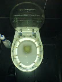 Cool Toilets Cool Toilet Seat Flickr Photo Sharing