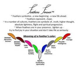 flying colors meaning best 25 feather meaning ideas on