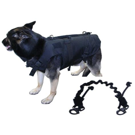 ballistic dog toys wow blog