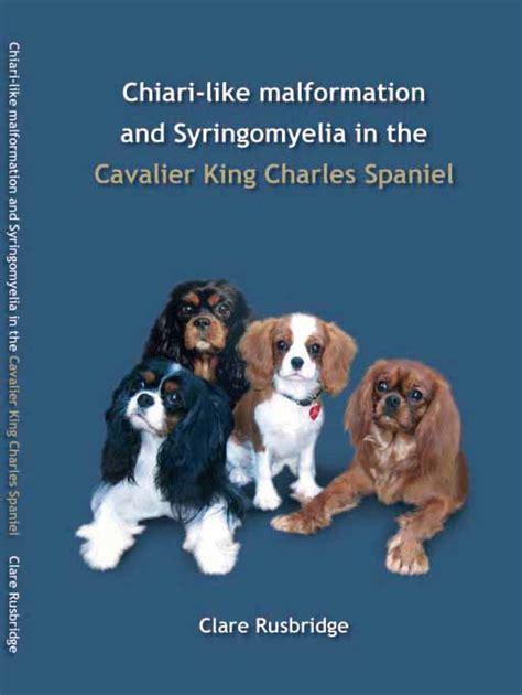 syringomyelia in dogs syringomyelia www pixshark images galleries with a bite