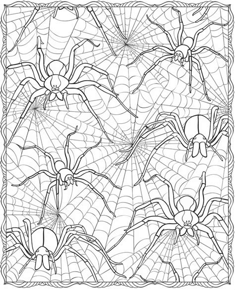 halloween coloring pages spider web welcome to dover publications