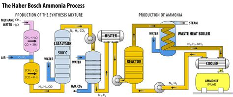 haber bosch process diagram nitrogen nature s explosive building blocks
