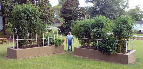 backyard growing system triyae backyard nursery growing system various