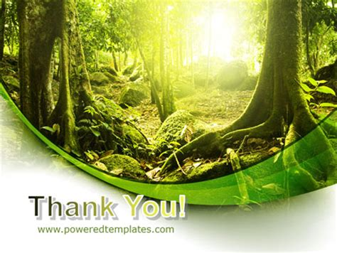 powerpoint templates jungle free jungle forest powerpoint template backgrounds 09472
