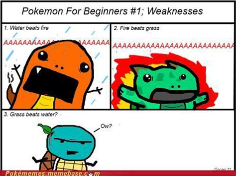 Best Pokemon Memes - clean pokemon memes images pokemon images