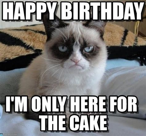 19th Birthday Meme - 100 best happy birthday meme images on pinterest
