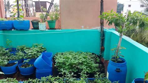 cocos roof garden terrace garden chennai july 2016