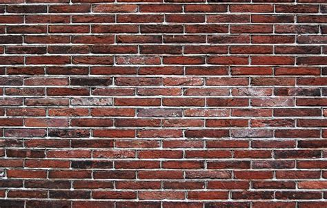 Cliff Notes For Brick Wall Syndrome   Thoughts On Plot