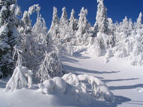 libro hiver recueil de nouvelles hiver au qu 233 bec en photo