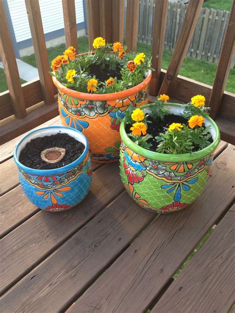 19 best mexican planters images on yard ideas