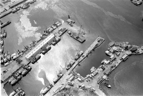 Mcdonald County Court Records Florida Memory Singleton Shrimp Co Shrimp Fleet And