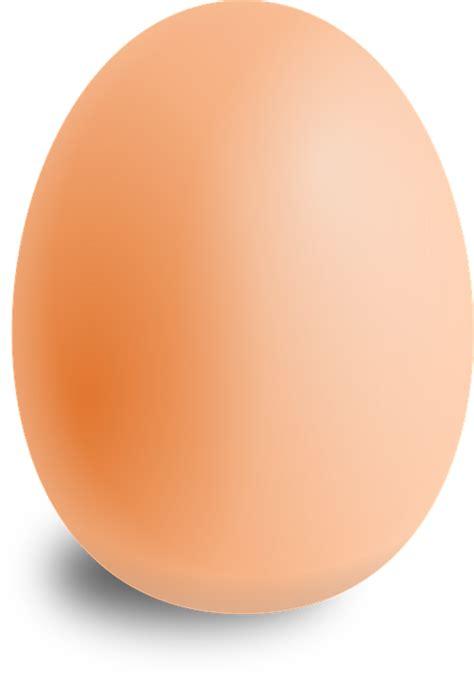 imagenes de huevos mamonas vector gratis huevo 211 valo los alimentos ronda imagen