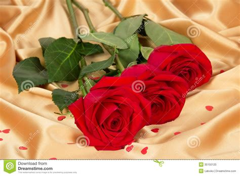 colorful roses wallpaper in romantic roses red roses on gold textile stock photo image of beautiful