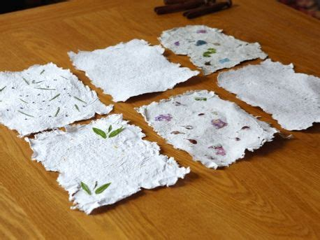 Make Seed Paper - 25 best ideas about wildflower seeds on
