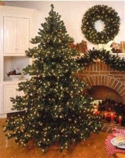 put up the tree when to put up the tree