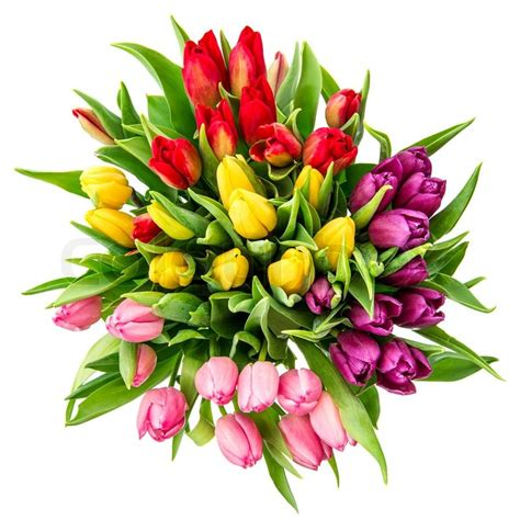Flowery Top bouquet of fresh multicolor tulips top view stock photo