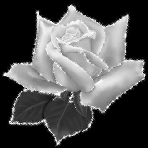 Fleur De L Amitié by Fleur De L Amiti 233 Mon Sera Un