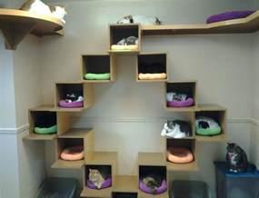 interesting cat trees