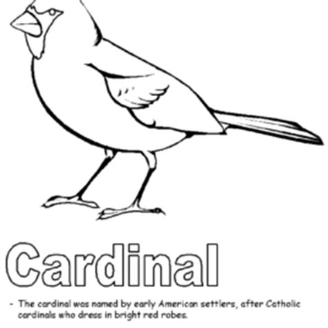 indiana state bird coloring page louisville cardinal free coloring pages