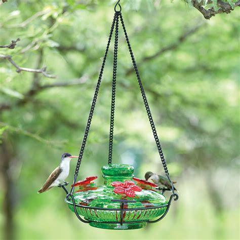 hummingbird feeder tips yard envy
