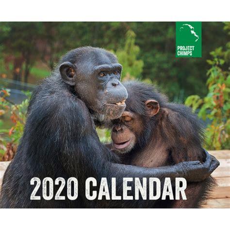 calendar cover square px project chimps