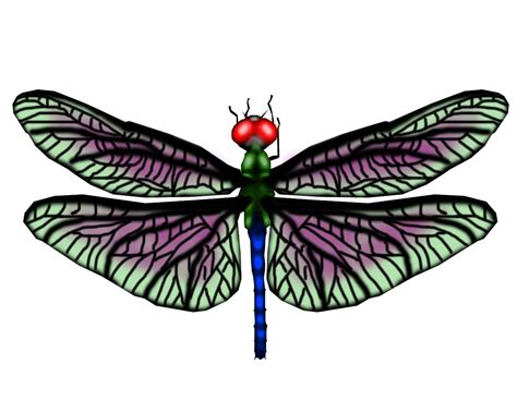 free dragonfly tattoo designs dragonfly ideas butterfly picture 4839