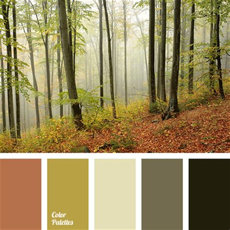 tree color schemes color palette 2292 color palette ideas