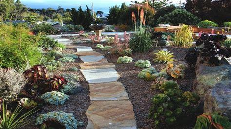 landscaping with succulents succulent landscape gardens