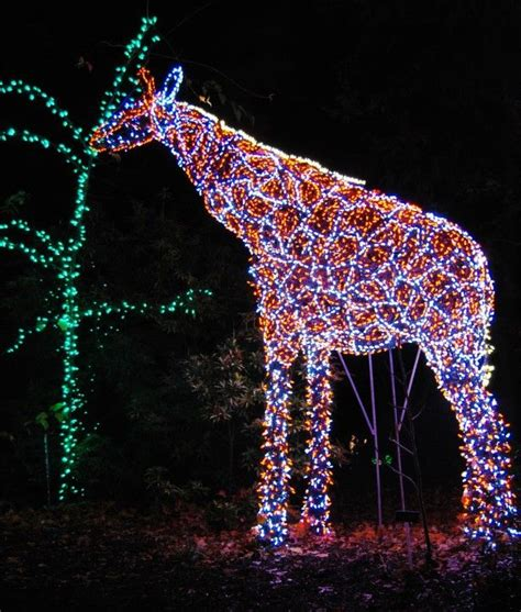 holiday road trip garden of lights at brookside gardens