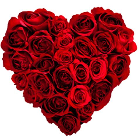 Valentines Day Roses That Speak To You by Mothers Day Package For Two