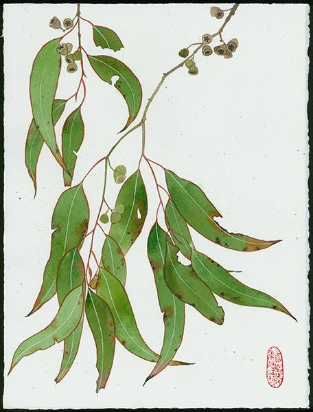 printable gum leaves limited edition print on archival paper
