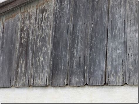 cost of replacing siding on house replace wood siding cost ask the builder