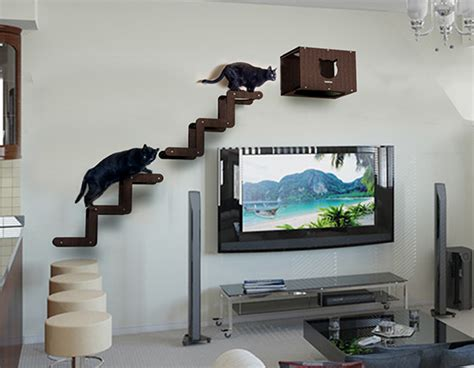 spectacular modern cat furniture from brazil hauspanther