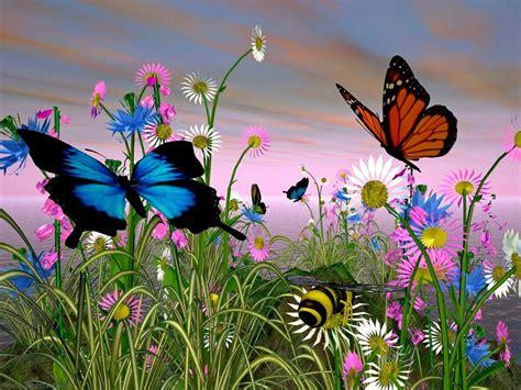 imagenes en 3d hermosas galer 237 a de im 225 genes im 225 genes de mariposas
