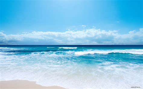 chrome themes ocean ocean chrome web store