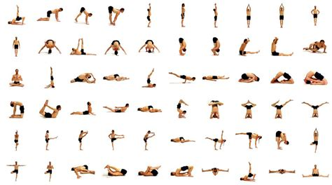 best yog beginning poses focus wellness