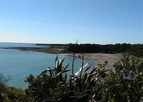 eventfinder new plymouth 17 best images about taranaki nz on plymouth