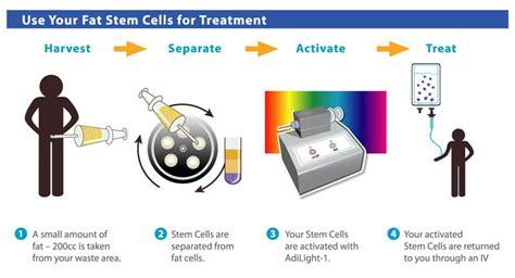 m stem supplement stem cell supplements