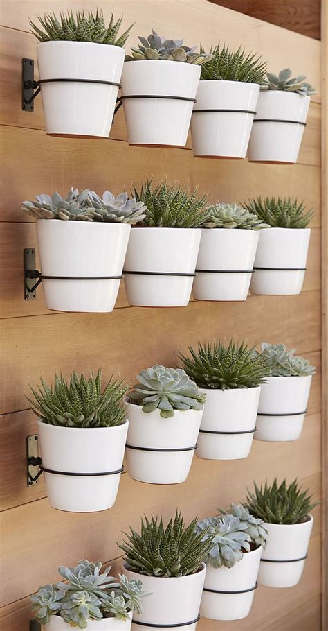 Outside Wall Planters by 25 Best Ideas About Wall Planters On Diy