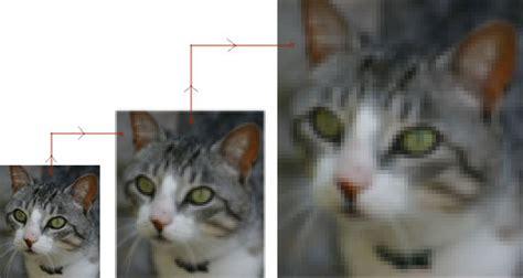 imagenes vectoriales wmf im 225 genes vectoriales y mapas de bits observatorio