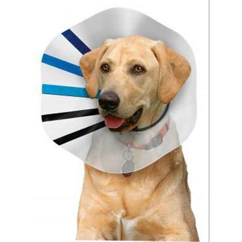 e collar for dogs kong pet e collar products gregrobert
