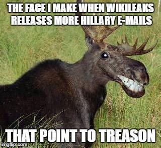 Moose Meme - grinnin moose imgflip