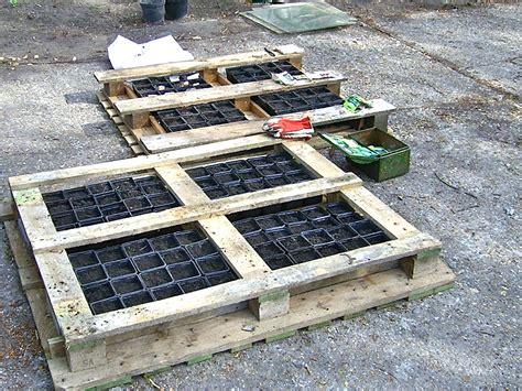 Gardening With Pallets Pallet Gardening St Lucas Institute Ghent Willem